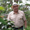 <p>NICARAGUA SANTACLARA FARM</p>
